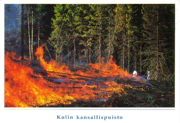 Postcard Sunday: Finland