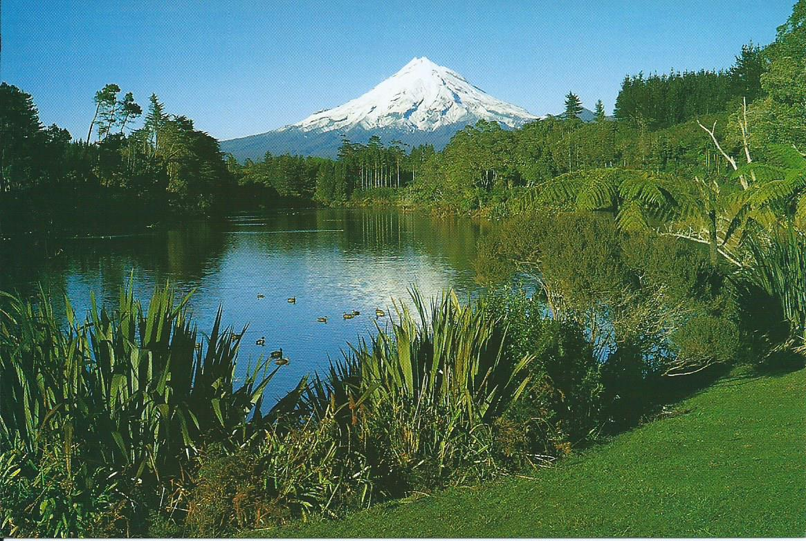 Postcard Sunday: New Zealand
